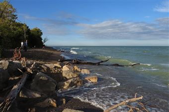 Point Pelee National Park, Windsor