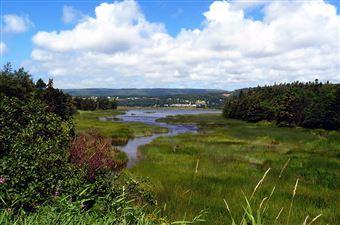 La vallée Codroy, Stephenville