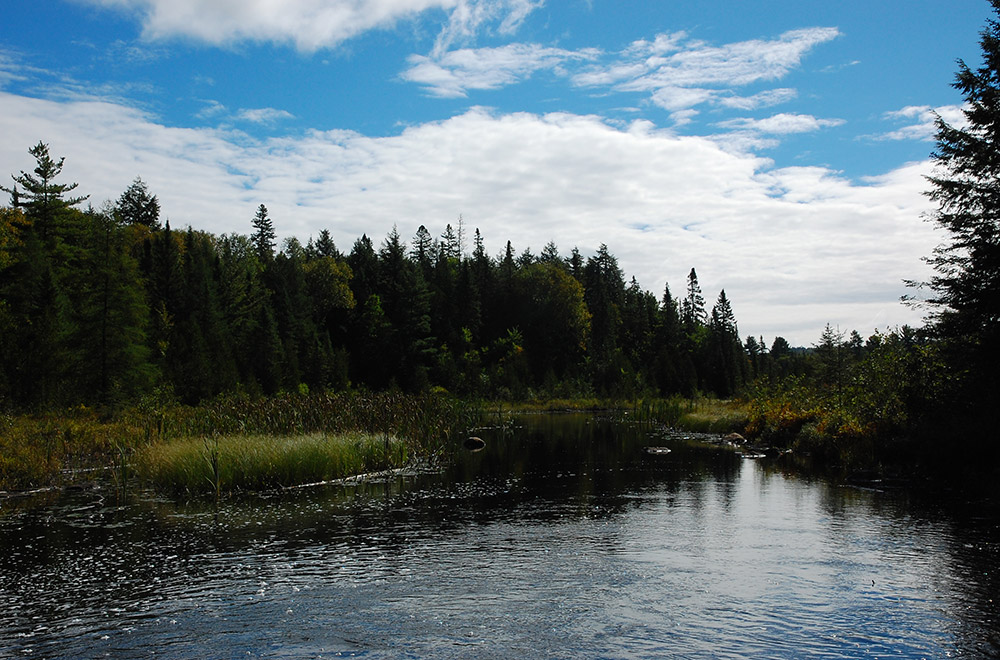 Mikisew Provincial Park, North Bay