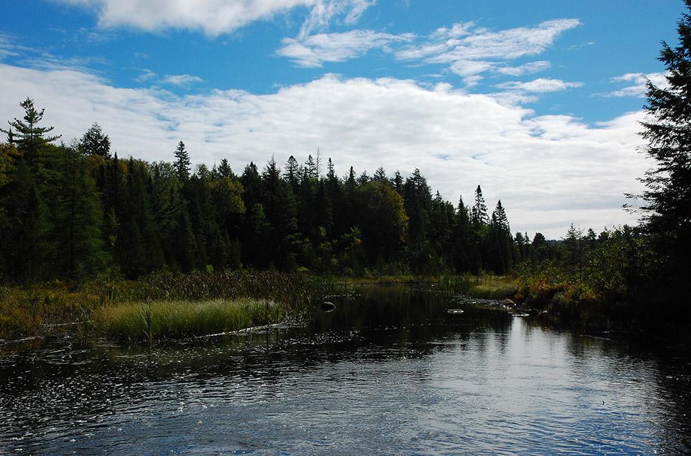 Le parc provincial Mikisew, North Bay