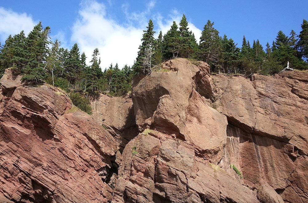 Le parc national Fundy, Moncton