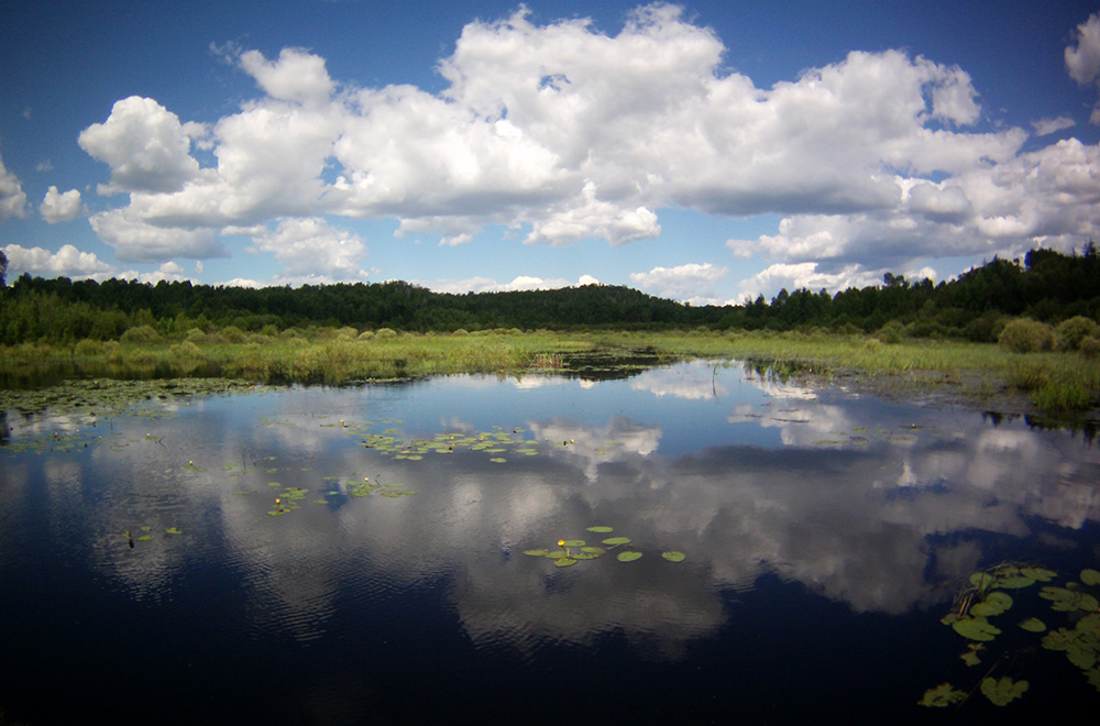 Lake Laurentian Conservation Area, Sudbury