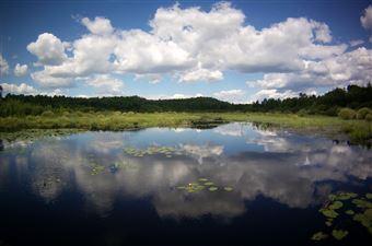 La zone de conservation du lac Laurentien, Sudbury
