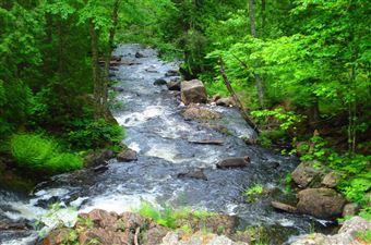 Hiawatha Highlands Conservation Area