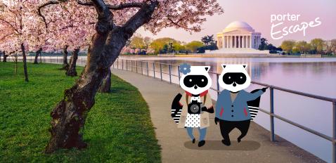 Same Washington, DC – new cool!